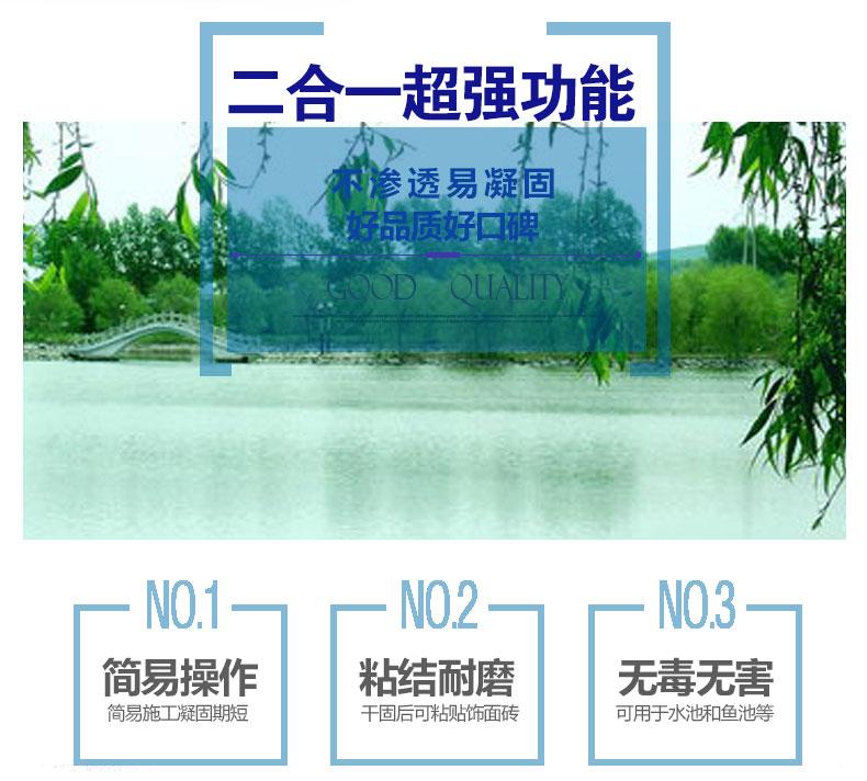 外墻透明防水膠_02.jpg